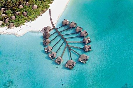Coco Palm Dhuni Kolhu auf den Malediven von Malediven-Piraten.com